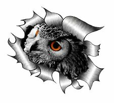 Rip ripped torn metal look design & eagle owl bird of prey vinyle autocollant voiture