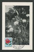 RUANDA-URUNDI MK 1958 FLORA PROTEA MAXIMUMKARTE CARTE MAXIMUM CARD MC CM d7843