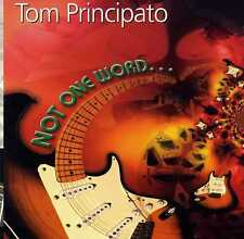 "Tom Principato ""Not One Word"" instrumental Guitar CD Stratocaster free Shipping!"