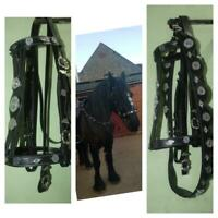 Black Baroque Bridle Pure Leather with Silver Hardware Strap Teodora Equestrian