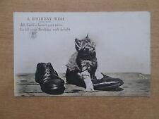 VINTAGE 1911 CAT POSTCARD - A BIRTHDAY WISH - PLAYFUL KITTEN