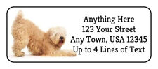 60 Soft Coated Wheaten Terrier #1 Dog Glossy Photo Quality Return Address Labels