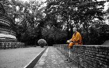 Framed Print - Buddhist Monk in Deep Meditation (Picture Poster Art Buddha)