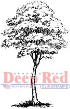 Deep Red Stamps Cottonwood Tree Rubber Cling Stamp