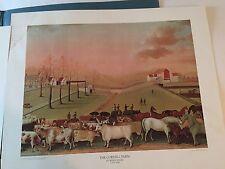 "Vintage The Cornell Farm by Edward Hicks Lithograph Print 20"" x 16"" ~ 1950-1969"