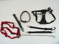 Easy Rider harness leather Med M Perri's Bison Kong Chain collar lot dog collar