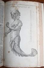 1759 Gentleman's Magazine Sylvanus Urban 22 Plates Mermaid Guadaloupe Orleans