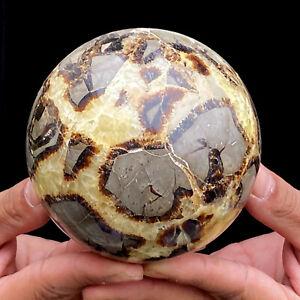 1290g Natural Septarian Dragon Quartz Crystal Sphere Ball Healing  FL2224