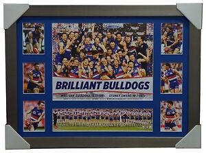 2016 AFL Premiers Western Bulldogs Premiergraph Brilliant Bulldogs Silver Frame