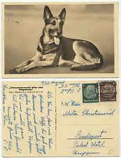 35995 -Schäferhund, Tierschutzverein Wien -AK, gelaufen 20.11.1939 nach Budapest