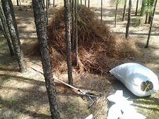 Elliptical Baled Pine Straw
