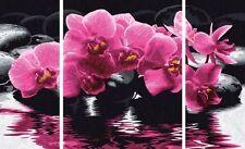 ORCHIDEEN Malen nach Zahlen Schipper Orchidee Triptychon Blüten 50x80 cm