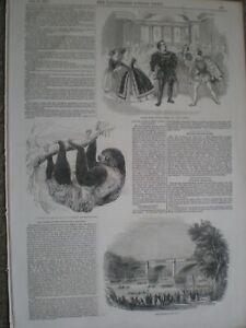 Opera composer Michael Costa Don Carlos & Durham Regatta 1844 prints ref AN