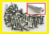 """Stainless Steel Imperial UNC Socket Caps (Allen Bolts) 50 Pack 10.24 1/4"""" 5/16"""""""