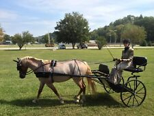 Biothane Large Pony Harness, Stainless Hardware, New!