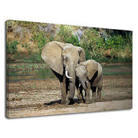 Lovely Elephant Mom And Baby For Drawing Room Canvas Wall Art Picture Print