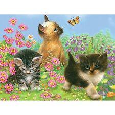Paint By Number Kit Cute Kitty Kitten Cat Garden Pencil Painting Starter Artist