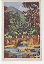 CPA 972 MARTINIQUE L'Alma le Piton du Carbet  Collection GUILHALMENC