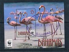 Bahamas 2012 WWF Fenicotteri 1 V MS CTO