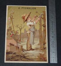 GRAND CHROMO 1880-1900 GRANDS MAGASINS PYGMALION PARIS L'ARBORICULTURE