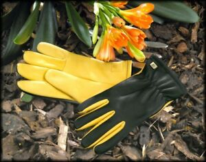 GENUINE GOLD LEAF DRY TOUCH GARDENING GLOVES MENS FREE FAST RECORDED DELIVERY