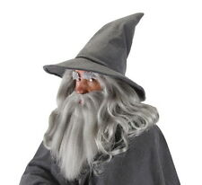 LICENSED GANDALF WIZARD HOBBIT THE LORD OF THE RINGS SORCERER GREY COSTUME HAT