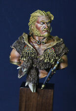 Celtic Warriors 1/10 Resin Bust (Young Miniature) Pro paint Verniciato