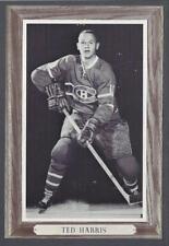 1964-67 Beehive Group III Montreal Canadiens Hockey Photos #106 Ted Harris