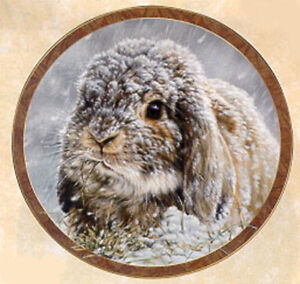 Bunny Tales Collection, by Vivi Crandall, Bradford Exchange Plate, Snow Bunny