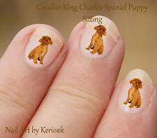 Cavalier King Charles Spaniel Sitting, 24 Dog Nail Art Stickers Decals