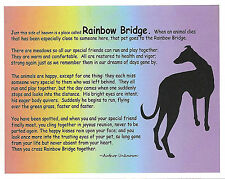Rainbow Bridge Greyhound Dog Sympathy Cards, set of 4, with envelopes