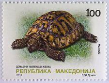 Landschildkröte Briefmarke aus Makedonien Einheimische Fauna Schildkröte