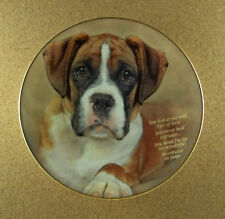 Cherished Boxers Eyes Of Love Plate Danbury Mint You Never Hold a Grudge Htf!
