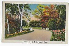 Vintage Postcard Bishopton Quebec Canada Scene Linen