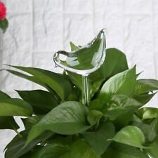 Glass Plant Flowers Water Feeder Self Watering Bird Swan Plant  Waterer Device