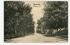 Delormier Ave MONTREAL Antique—Illustrated Postcard Co Pub 1906