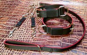 ST7 Webbing Dog Collar Couples & Lead Set Lurcher/Greyhound/Saluki/Bull Terrier