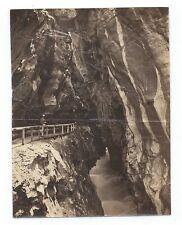 D004 Photographie vintage original Suisse 1873 Albuminé Albumen