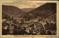 Wildbad Schwarzwald AK ~1920/30 Militär Kuranstalt Totalansicht Panorama Blick