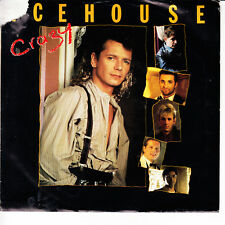ICEHOUSE Crazy VG(+) 45 RPM P/S VG