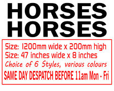 Large Horses Horsebox Trailer Vinyl Lettering Stickers Signs Decals Graphics
