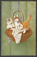 Cats, Three Little Cats Hanging on a Basket, Funny Old Postcard