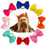 50/100pcs Cat Dog Hair Bows with Rubber Bands Pet Grooming Headdress for Yorkie