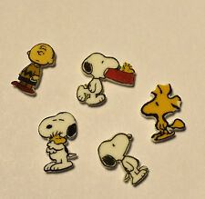 5 CHARLIE BROWN FLOATING LOCKET CHARMS WOODSTOCK CHARMS