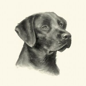 Dog Show Ring Number Clip Pin Breed - Labrador Lab (Chocolate)