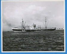 MS Helicon B&W Photo - Royal Netherlands Steamship KNSM