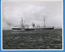 MS Helicon B&W Photo - Royal Netherlands Steamship KNSM