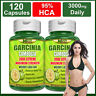 120 Capsules GARCINIA CAMBOGIA 95% HCA Burn Belly Fat Weight Loss Less Appetite