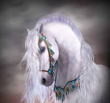 Home Art wall decoration Horse Animal oil painting picture Printed on Canvas