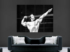 ARNOLD SCHWARZENEGGER POSTER GYM NAKED BODY CONQUER BODYBUILDING ART LARGE